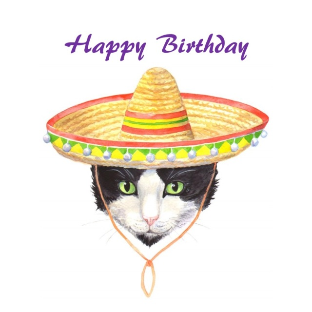 Diego The Mexican Birthday Card
