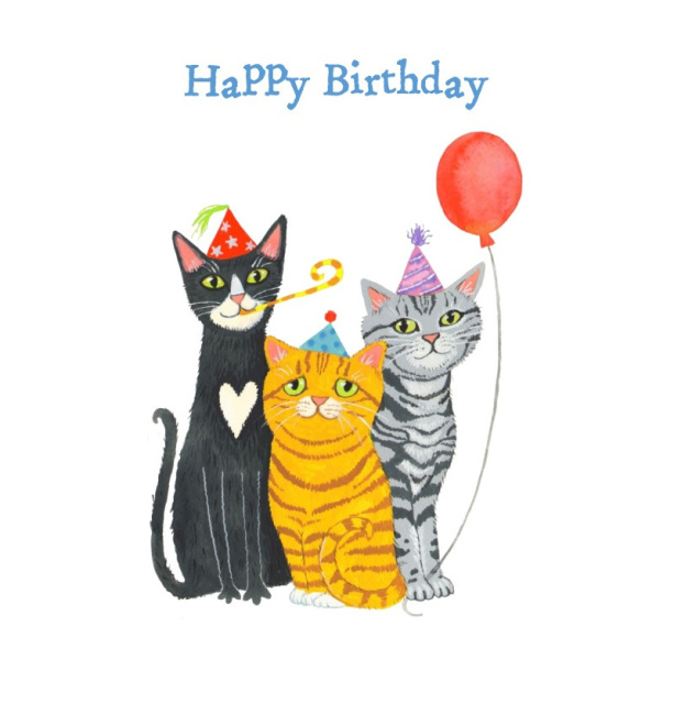 Funny Cat Birthday Cards